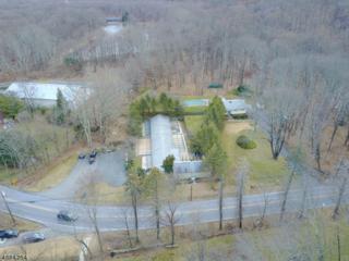 5 River Rd, Mount Olive Twp., NJ 07836 (MLS #3363048) :: The Dekanski Home Selling Team