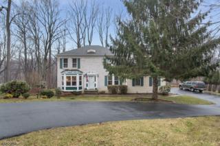 157 Sun Valley Way, Morris Plains Boro, NJ 07950 (MLS #3363164) :: The Dekanski Home Selling Team