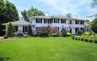 72 Glenwild Rd, Madison Boro, NJ 07940 (MLS #3363361) :: The Dekanski Home Selling Team