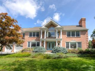 28 Wickham Way, Chatham Twp., NJ 07928 (MLS #3363362) :: The Dekanski Home Selling Team