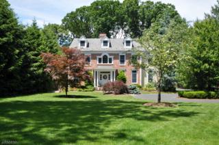 242 Lafayette Ave, Chatham Twp., NJ 07928 (MLS #3363371) :: The Dekanski Home Selling Team