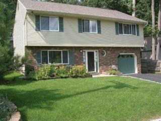 4 Birch Rd, Ringwood Boro, NJ 07456 (MLS #3363600) :: The Dekanski Home Selling Team