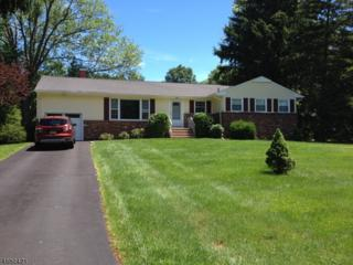 1673 Brookdale Dr, Bridgewater Twp., NJ 08836 (MLS #3363605) :: The Dekanski Home Selling Team