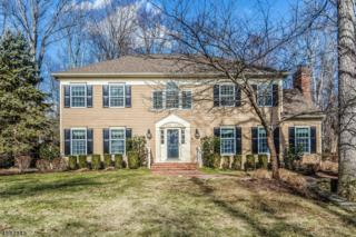 25 Edward Ct, Bernards Twp., NJ 07920 (MLS #3363629) :: The Dekanski Home Selling Team
