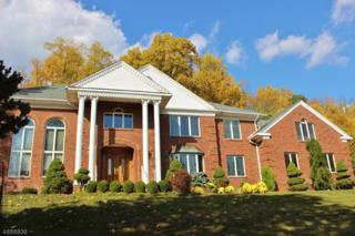 122 St Josephs Dr, Long Hill Twp., NJ 07980 (MLS #3363669) :: The Dekanski Home Selling Team