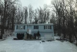 32 Chestnut Tree Dr, Vernon Twp., NJ 07422 (MLS #3363716) :: The Dekanski Home Selling Team