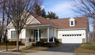 1 Falcon Way, Washington Twp., NJ 07882 (MLS #3363791) :: The Dekanski Home Selling Team