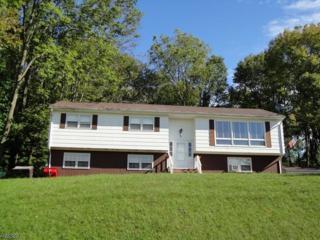 3 Slayton Rd, Vernon Twp., NJ 07418 (MLS #3363929) :: The Dekanski Home Selling Team