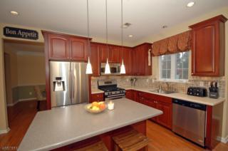10 Allison Way, Franklin Twp., NJ 08540 (MLS #3364008) :: The Dekanski Home Selling Team