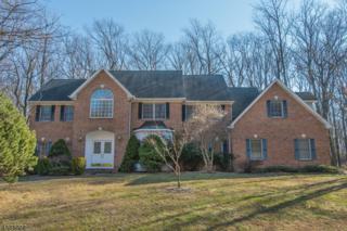 5 Leslie Ann Ct, Denville Twp., NJ 07834 (MLS #3364009) :: The Dekanski Home Selling Team