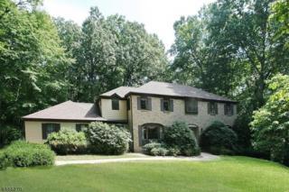 7 Honeyman Rd, Tewksbury Twp., NJ 08833 (MLS #3364103) :: The Dekanski Home Selling Team