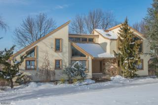 5 Highview Rd, Fredon Twp., NJ 07860 (MLS #3364334) :: The Dekanski Home Selling Team