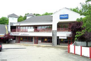 915 County Road 517, Independence Twp., NJ 07840 (MLS #3364384) :: The Dekanski Home Selling Team