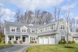 181 Long Hill Dr, Millburn Twp., NJ 07078 (MLS #3364392) :: The Dekanski Home Selling Team