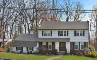 987 Chimney Ridge Dr, Springfield Twp., NJ 07081 (MLS #3364446) :: The Dekanski Home Selling Team