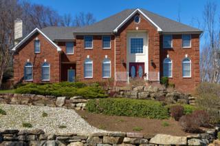 12 Cedar Gate Rd, Denville Twp., NJ 07834 (MLS #3364562) :: The Dekanski Home Selling Team