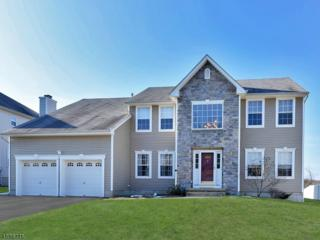850 Ravine Road, Jefferson Twp., NJ 07849 (MLS #3364644) :: The Dekanski Home Selling Team