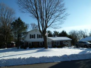 8 Maisie Ln, West Milford Twp., NJ 07480 (MLS #3364688) :: The Dekanski Home Selling Team