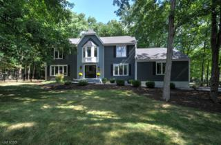 53 Harter Rd, Morris Twp., NJ 07960 (MLS #3364956) :: The Dekanski Home Selling Team