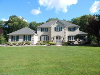 6 Davids Ln, Hillsborough Twp., NJ 08844 (MLS #3365111) :: The Dekanski Home Selling Team