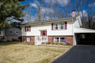 15 Mill St, Stockton Boro, NJ 08559 (MLS #3365114) :: The Dekanski Home Selling Team
