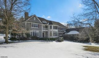 1 Cricket Ln, Chester Twp., NJ 07930 (MLS #3365254) :: The Dekanski Home Selling Team