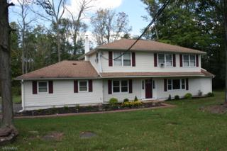 14 Locktown School Rd, Delaware Twp., NJ 08822 (MLS #3365329) :: The Dekanski Home Selling Team