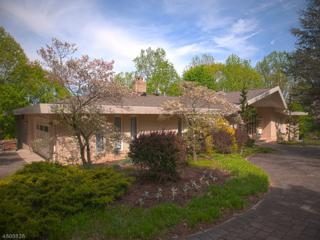 52 Chopin Dr, Wayne Twp., NJ 07470 (MLS #3365522) :: The Dekanski Home Selling Team
