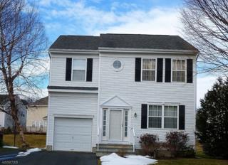 90 Watch Hill Rd, Hackettstown Town, NJ 07840 (MLS #3365523) :: The Dekanski Home Selling Team