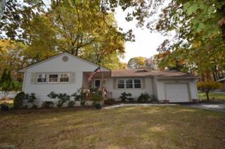 15 Tinc Rd, Mount Olive Twp., NJ 07836 (MLS #3365551) :: The Dekanski Home Selling Team