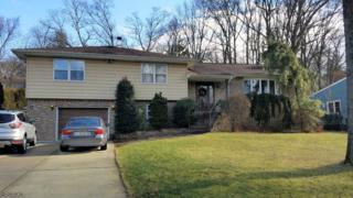162 Lake Dr E, Wayne Twp., NJ 07470 (MLS #3365729) :: The Dekanski Home Selling Team