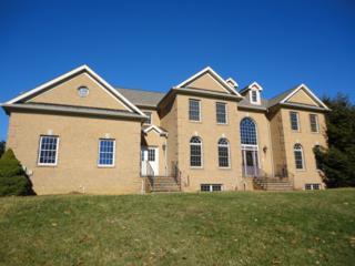 18 Forest Hill Dr, Sparta Twp., NJ 07871 (MLS #3365794) :: The Dekanski Home Selling Team