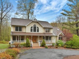 3 Puddingstone Lane, Jefferson Twp., NJ 07438 (MLS #3365806) :: The Dekanski Home Selling Team