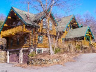 11 Little Bear Rd, Denville Twp., NJ 07834 (MLS #3365899) :: The Dekanski Home Selling Team