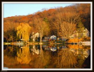 903 S Shore Ter, Stillwater Twp., NJ 07860 (MLS #3365985) :: The Dekanski Home Selling Team