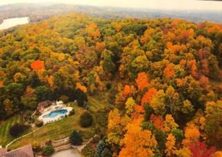 9 Baldwin Dew Ct, Sparta Twp., NJ 07871 (MLS #3366000) :: The Dekanski Home Selling Team
