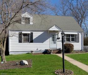 1015 Columbus Ave, Westfield Town, NJ 07090 (MLS #3366029) :: The Dekanski Home Selling Team