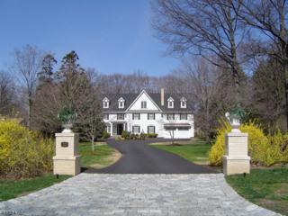 10 Normandy Pkwy, Morris Twp., NJ 07960 (MLS #3366062) :: The Dekanski Home Selling Team
