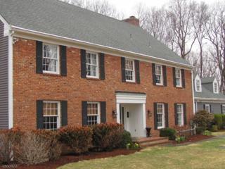 366-2 Mendham Rd, Bernardsville Boro, NJ 07924 (MLS #3366182) :: The Dekanski Home Selling Team