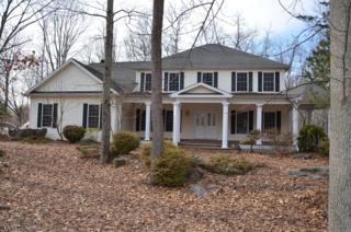 12 Eagles Nest Road, Green Twp., NJ 07860 (MLS #3366323) :: The Dekanski Home Selling Team