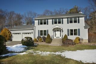 15 Renault Rd, West Milford Twp., NJ 07480 (MLS #3366352) :: The Dekanski Home Selling Team