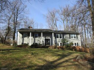 5 Persimmon Way, Springfield Twp., NJ 07081 (MLS #3366433) :: The Dekanski Home Selling Team