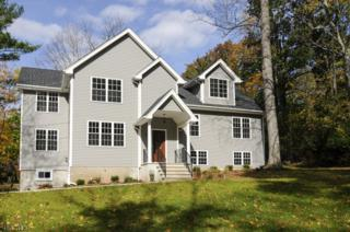 5 Osceola Rd, Wayne Twp., NJ 07470 (MLS #3366517) :: The Dekanski Home Selling Team