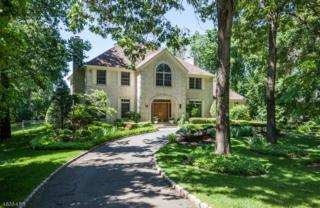 42 Abbott Rd, Montville Twp., NJ 07082 (MLS #3366538) :: The Dekanski Home Selling Team
