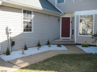 55 Phlox Ct, Readington Twp., NJ 08889 (MLS #3366721) :: The Dekanski Home Selling Team