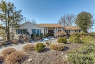 44 Stonewall Drive, Livingston Twp., NJ 07039 (MLS #3366760) :: The Dekanski Home Selling Team