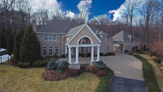 19 Greenfield Hl, Sparta Twp., NJ 07871 (MLS #3366931) :: The Dekanski Home Selling Team