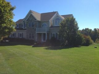34 Players Blvd, Fredon Twp., NJ 07860 (MLS #3366951) :: The Dekanski Home Selling Team