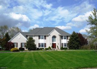 32 Deer Path, Hillsborough Twp., NJ 08844 (MLS #3367037) :: The Dekanski Home Selling Team