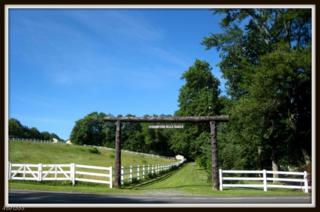 58 Kemah Lake Rd, Hampton Twp., NJ 07860 (MLS #3367058) :: The Dekanski Home Selling Team